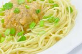 Spaghetti with Meatball and Spring Onions on White Plate poster