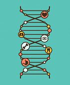 pic of nod  - Symbolic DNA sign with simple organ icons in the nods - JPG