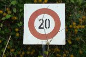foto of inappropriate  - Speed limit in the middle of fruit tree - JPG