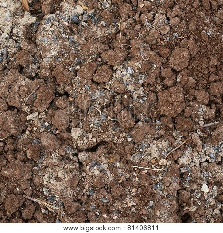 Bad quality earth soil