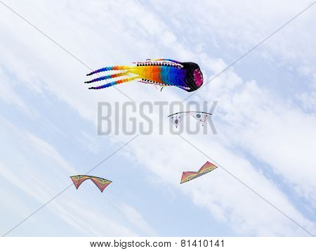 Great Octopus-like Kite In The Group Of Small Kites