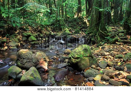 French Polynesia Rainforest Rock Carvings