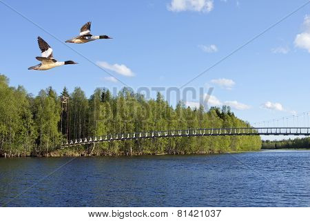 Suspension, wooden bridge over a river.