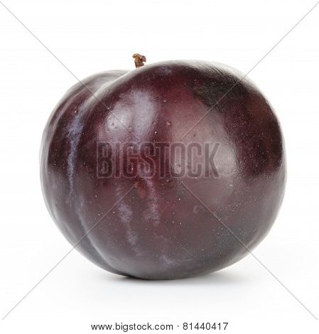 one ripe black plums isolated