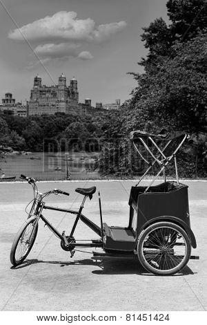 Central Park Manhattan The Lake rickshaw bike New York US