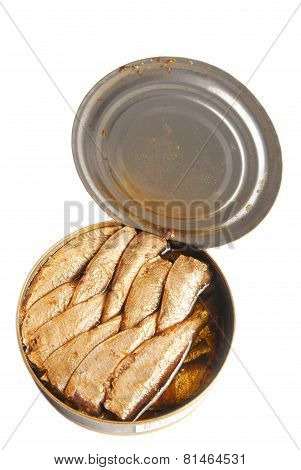 can of sprats in oil isolated on white