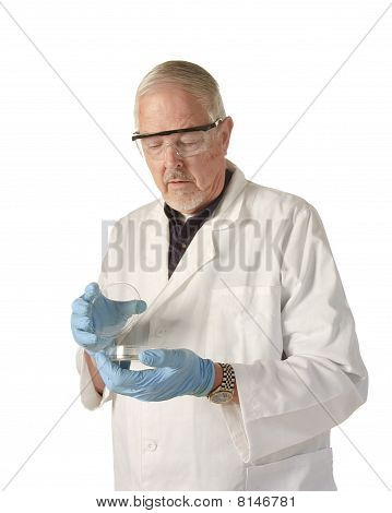 Scientist Looking Into Petri Dish