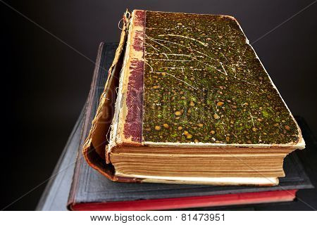 Old style Book