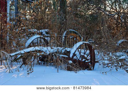 Abandon Antique Farm Wagon