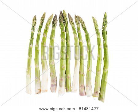 Green Asparagus In A Row