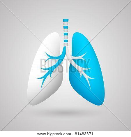 Human lungs medical art creative