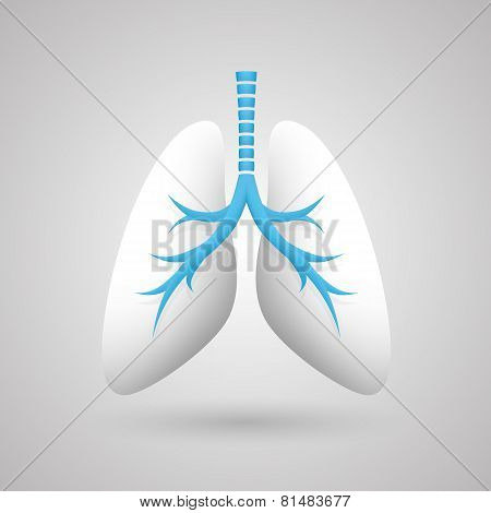 Human lungs medical art creative