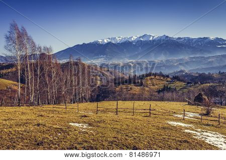 Alpine Countryside Scenery
