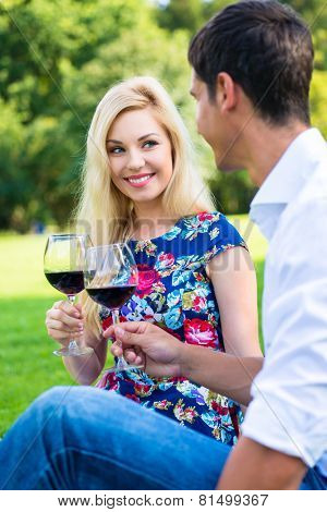 Couple drinking red wine on grass of park at picnic