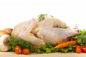 pic of turkey-hen  - Fresh raw turkey in a roasting pan ready for the oven - JPG