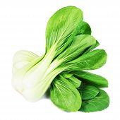 Постер, плакат: fresh green pak choi on a white background