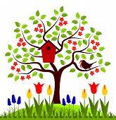 pic of nesting box  - vector flowering tree with nesting bird box and bird bringing worm - JPG
