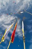 picture of flag pole  - Colorful buddhist prayer flags and standards on poles in Pathivara Devi Nepal