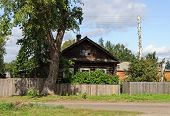 picture of log fence  - Old log house with a tall tree and unpainted wooden fence in front of him - JPG