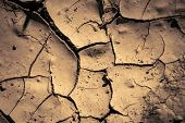 pic of drought  - This earth is cracking due to heat climate change and drought - JPG