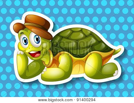 Closeup happy turtle on blue background
