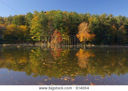 Dulce flecha Lago