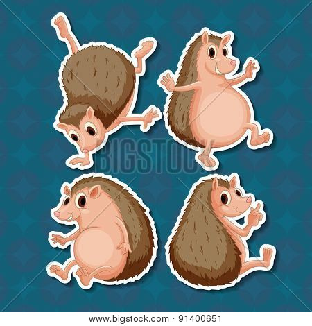 Four positions of same hedgehog on blue background