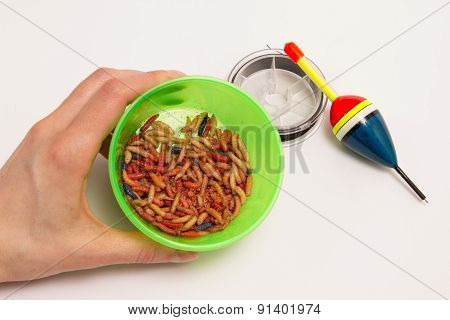 Worms For Fishing Bait And Fishing Accessories