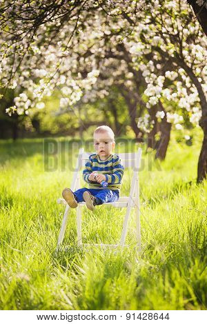 Portrait Of Cute Little Boy Sitting On White Painted Wooden Chair