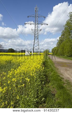 Green Power - Colza Field And Transmission Tower