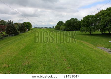 The View Of Meadow