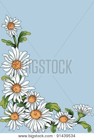 Floral corner from chamomile plant on blue background. Stroke is on a separate layer and can be removed, then the flowers look like painting.