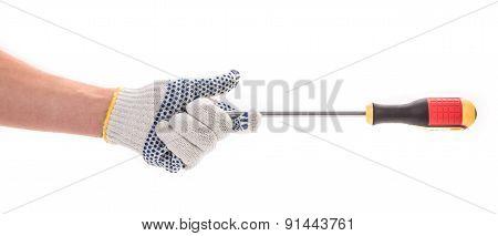 Hand holding screwdriver.