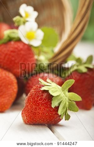 basket with strawberry on table