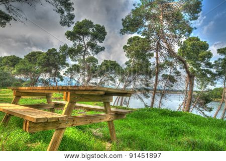 Wooden Picnic Table In A Pinewood In Hdr