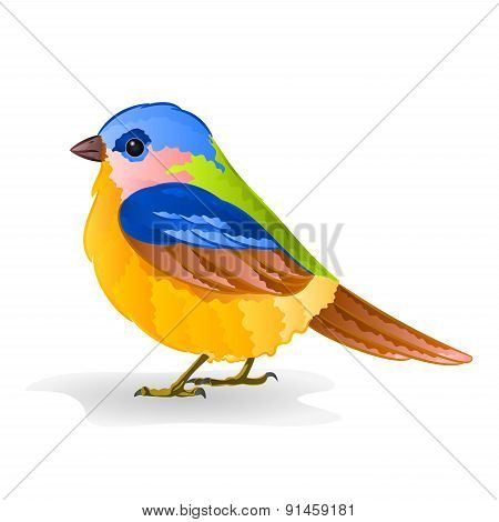 Small Bird Titmouse Vector