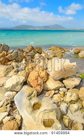 Rocks By The Shore