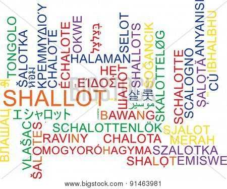 Background concept wordcloud multilanguage international many language illustration of shallot