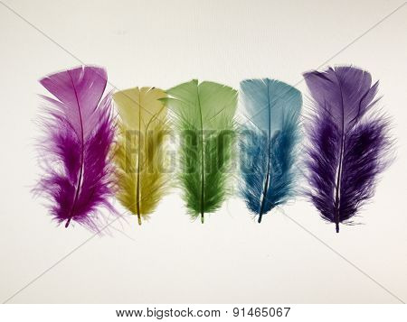Yellow, Pink, Purple, Green And Blue Pen On A White Background. Isolated