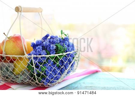 Beautiful bouquet of muscari - hyacinth with fruits in metal basket on windowsill