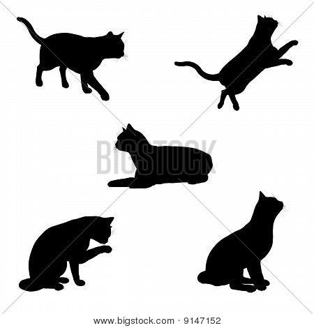 running cat silhouette  Cat Silhouettes