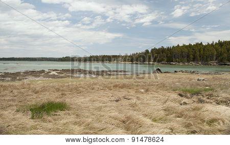 Bay In Coastal Maine