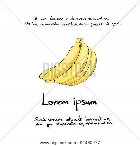 Banana Bunch Hand Draw Logo Color Icon Vector