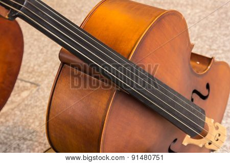 Violoncello In Music Room