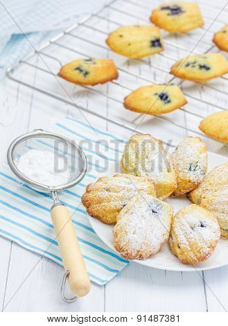 Sugar Powdered Homemade Madeleines With Blueberries
