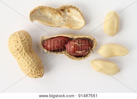 Different Kind Of Peanuts