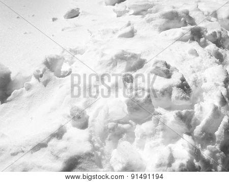 Fluffy Snow Close Up