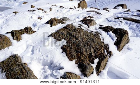 Close Up Snow And Rock