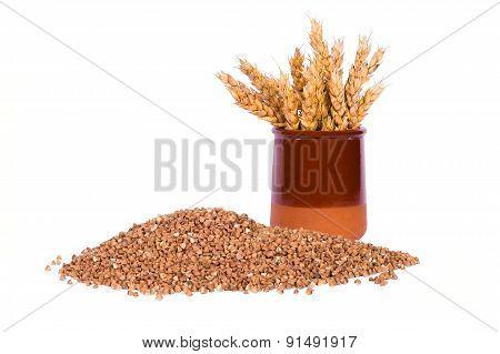 Buckwheat grain and wheat