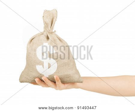 Woman Hand With Small Bag On White Background